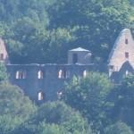 Klosterunine Schönrain